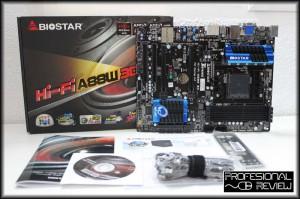 biostar-a88w3d-03