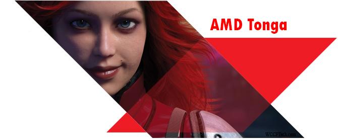 AMD-Tonga-GPU2