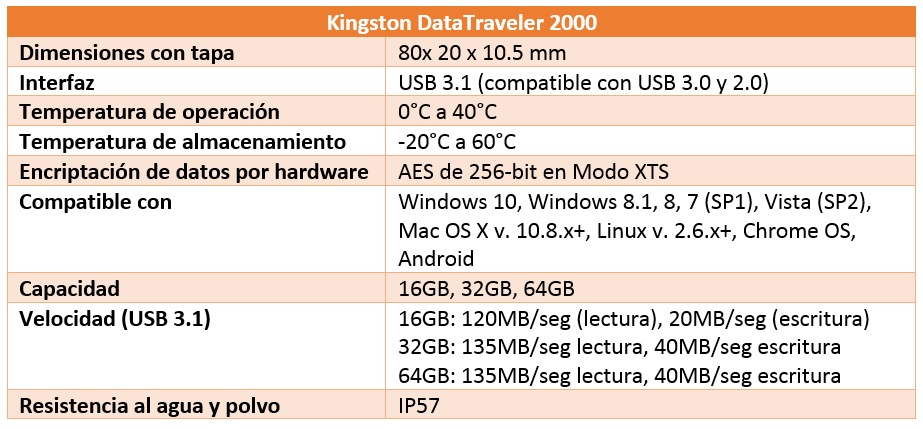 Kingston DataTraveler 2000 características