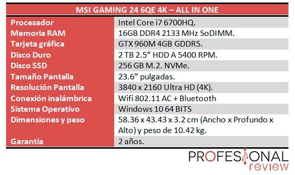 MSI Gaming 24 6QE 4K