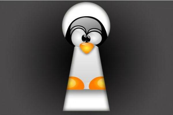 Photo of Nmap una aplicación fundamental en tu sistema linux