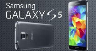 Samsung Galaxy S5 recibe Marshmallow
