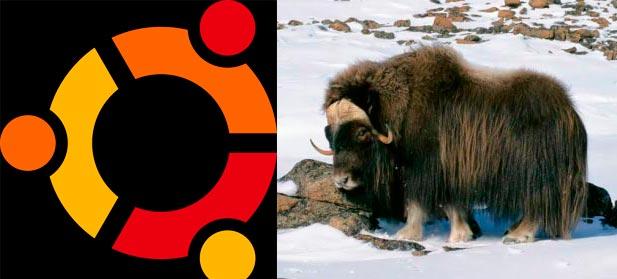 Photo of Ubuntu 16.10 tendrá nombre en clave 'Yakkety Yak'