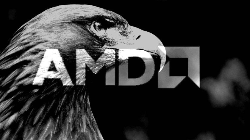 amd-gray-hawk