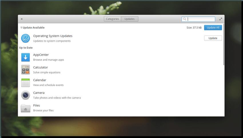 Elementary OS Loki - centro de software - vista update
