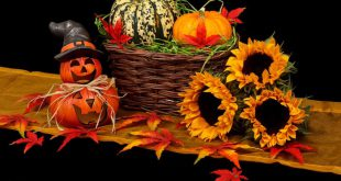 apps-juegos-oferta-halloween-play-store