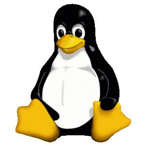 AMD Ryzen necesita Linux 4.9.10 o superior