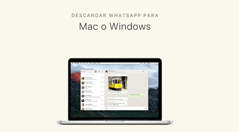 descargar usar whatsapp windows