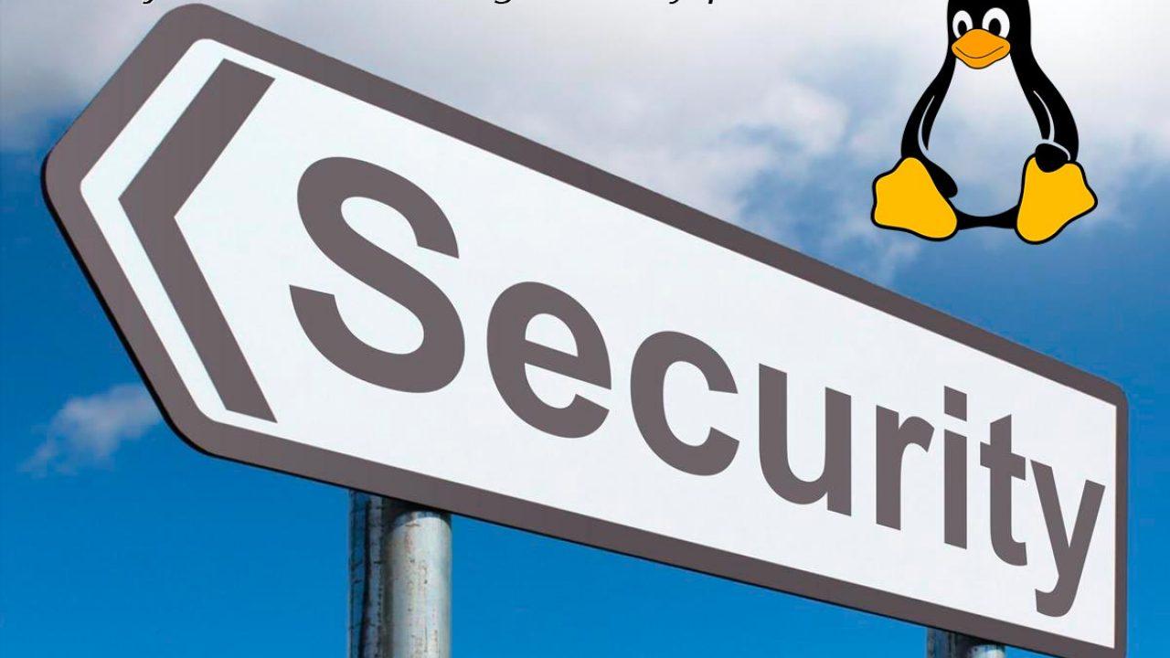 Las mejores Linux en seguridad y privacidad