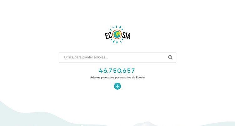 Photo of Ecosia transforma tus búsquedas en nuevos árboles