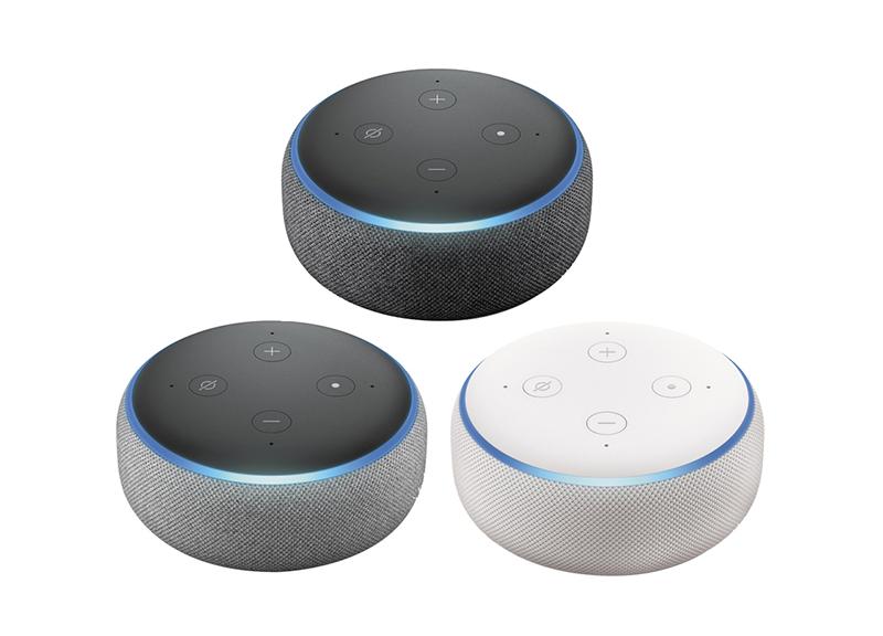 home mini vs echo dot
