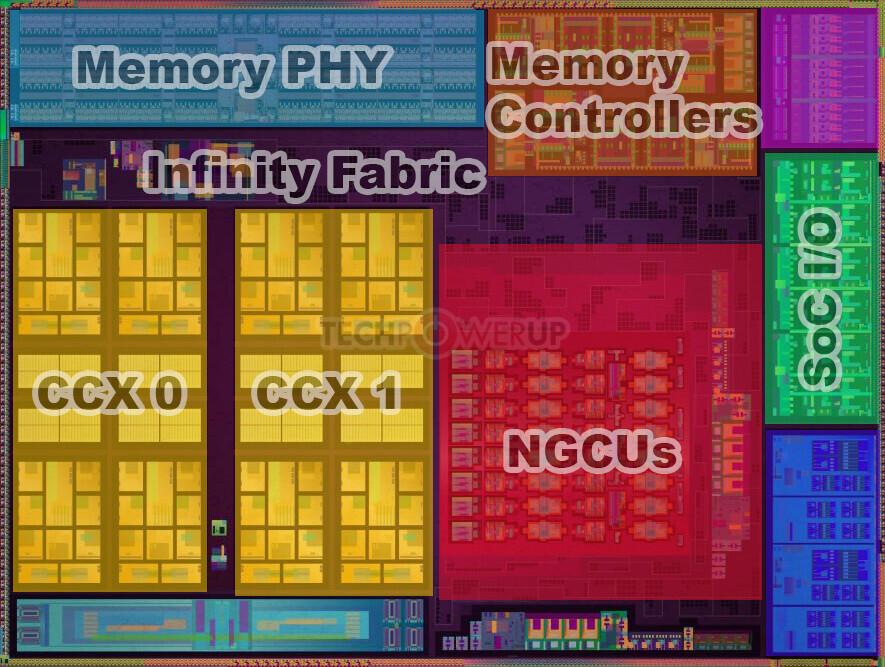 AMD renoir interior
