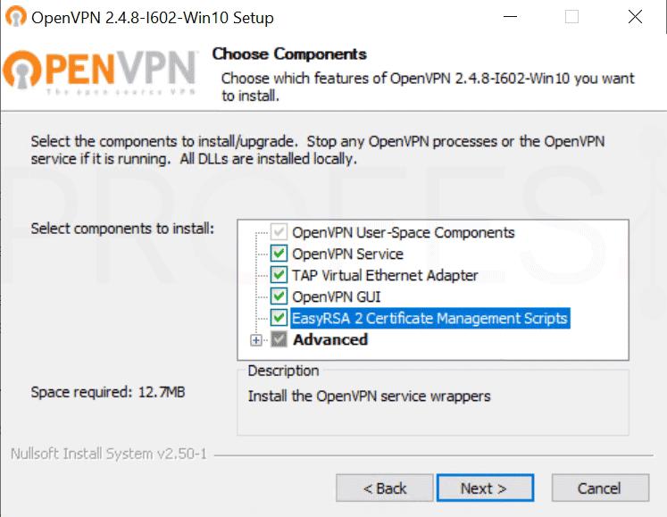 Crear VPN con OpenVPN en Windows paso04