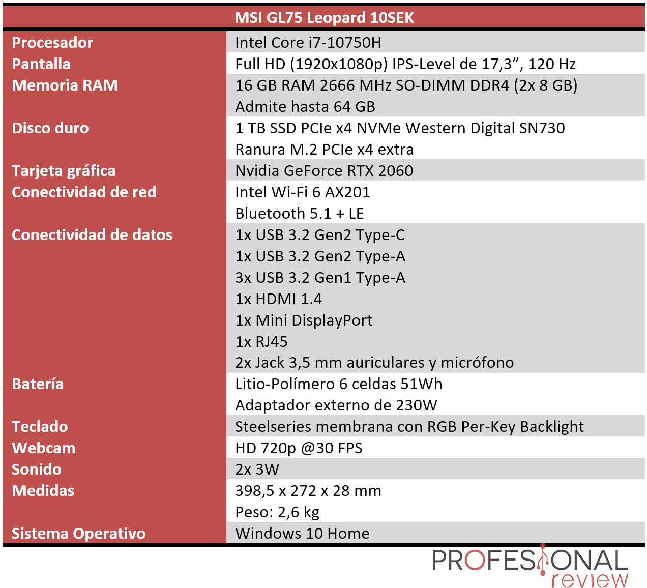 MSI GL75 Leopard 10SEK Características