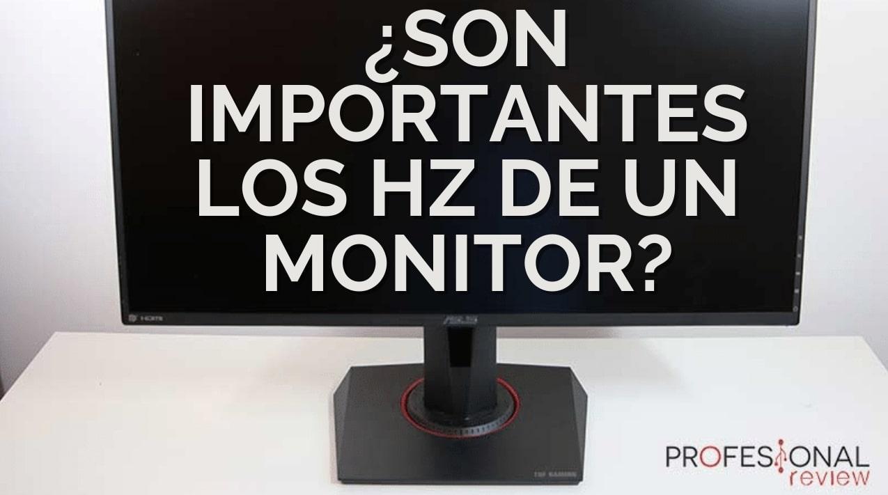 Son importantes los Hz de un monitor
