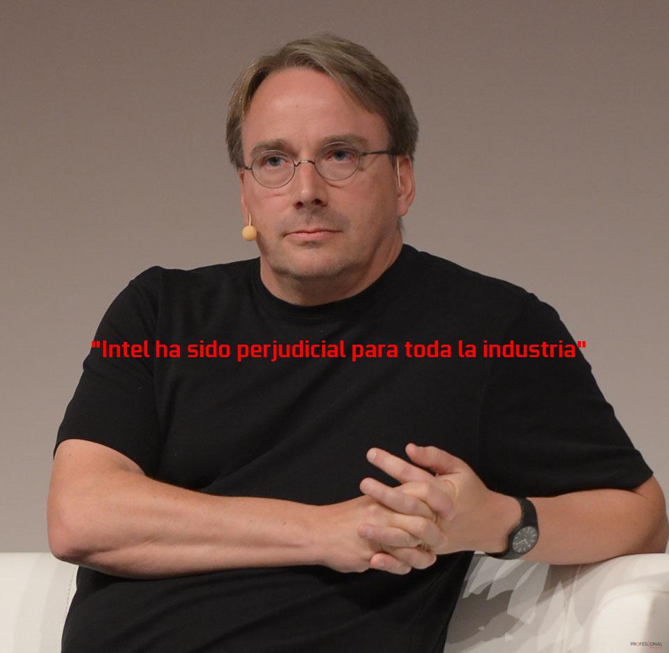 Linus memoria Intel ECC