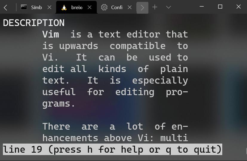 Tipografía de Windows Terminal