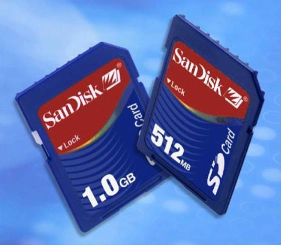 SanDisk SD 1GB