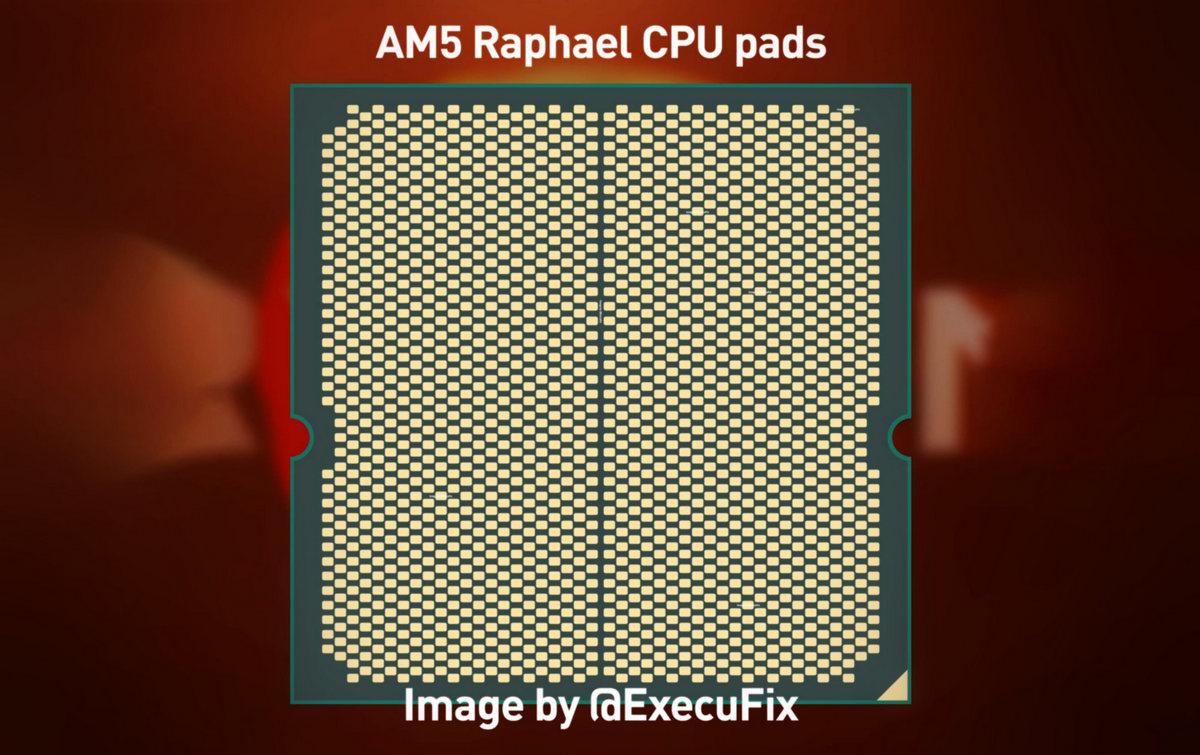 AMD Raphael