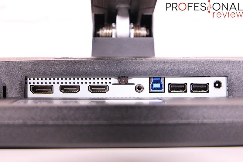 MSI Optix MAG301RF Puertos