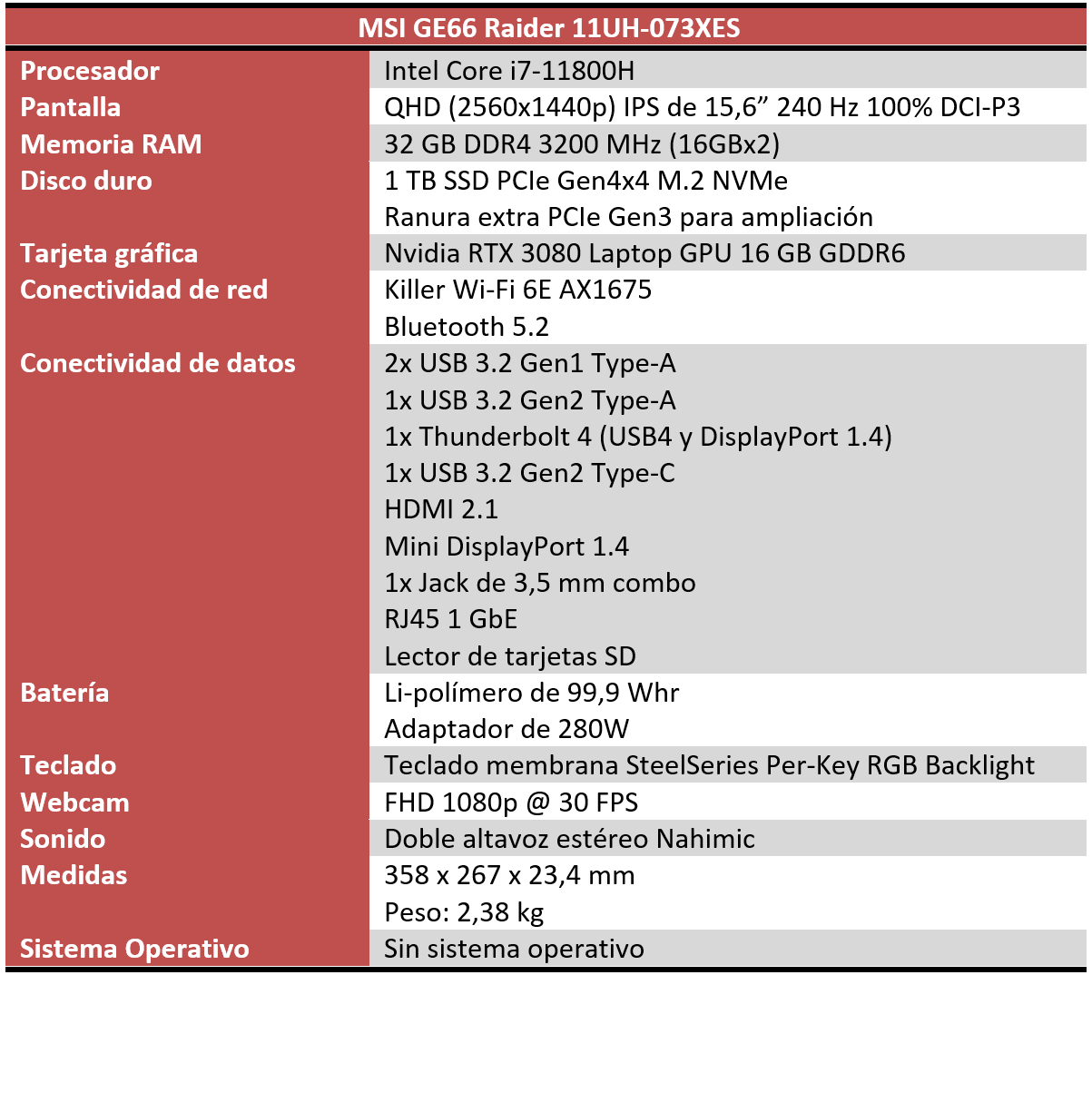 MSI GE66 Raider 11UH Características
